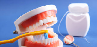 Four-Kinds-of-Teeth-and-the-Function-of-the-Teeth-on-toplineblog